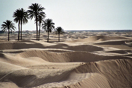 Resultado de imagen de djerba tunez