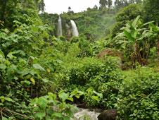 La provincia de Jinja esconde algunos de los tesoros naturales m�s bellos del pa�s. | Fotos: Carolina Valdeh�ta