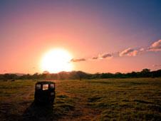 �frica y sus innumerables Parques Naturales y Reservas de la Biosfera donde poder observar grandiosos atardeceres.